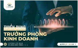 TUYỂN GẤP: TRƯỞNG PHÒNG KINH DOANH