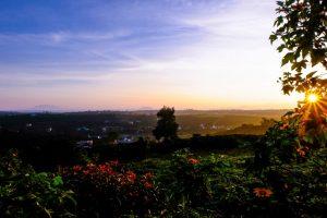 Đất nền Bảo Lộc hấp dẫn giới đầu tư cuối năm 2020