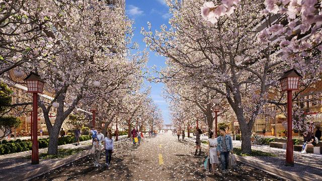Bất động sản Quy Nhơn còn thiếu đô thị đầu tư bài bản - Ảnh 5.